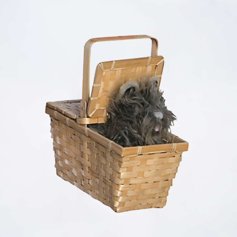 Deluxe Wizard of Oz Basket with Toto